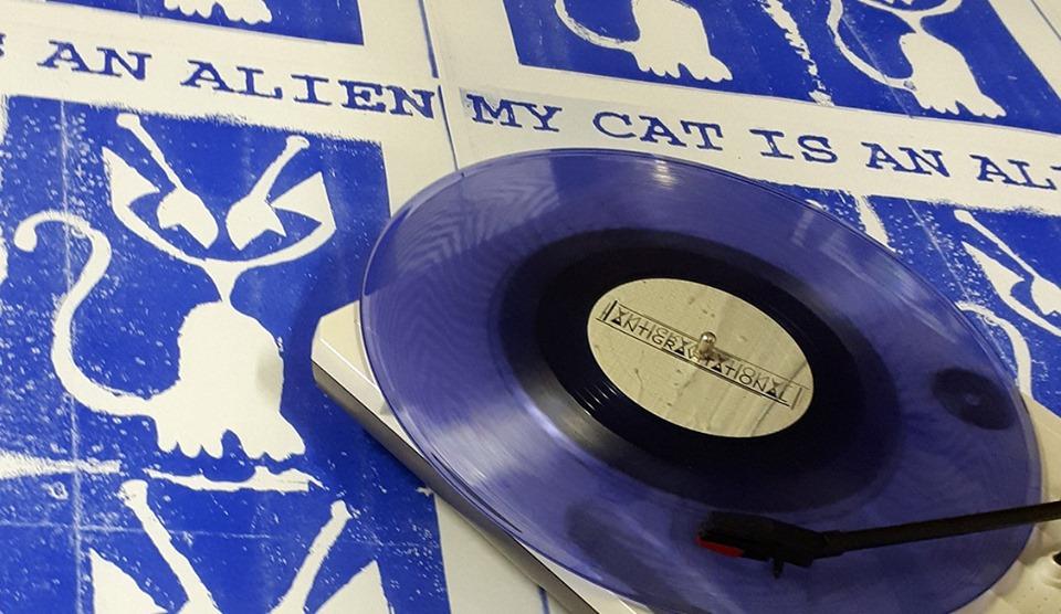 """Musica ma non solo a Torino, """"My Cat Is An Alien – MCIAA""""."""